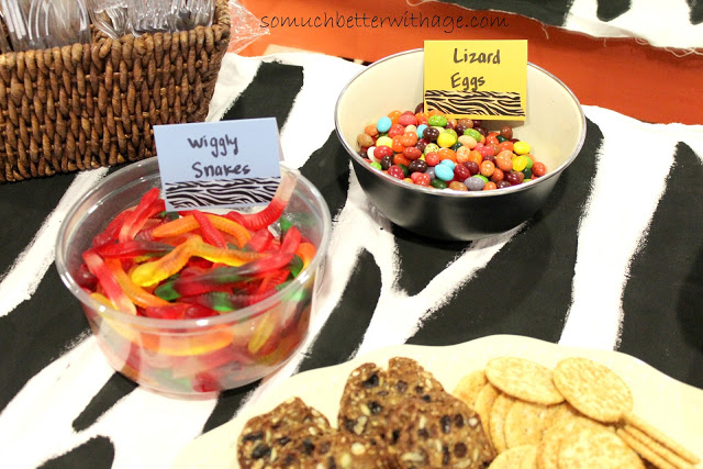 Safari birthday party / candy on table - So Much Better With Age