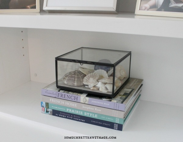 sea shells and books somuchbetterwithage.com