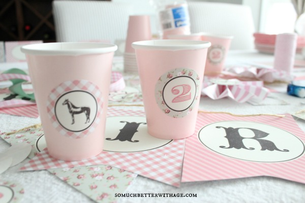 DIY party cups somuchbetterwithage.com
