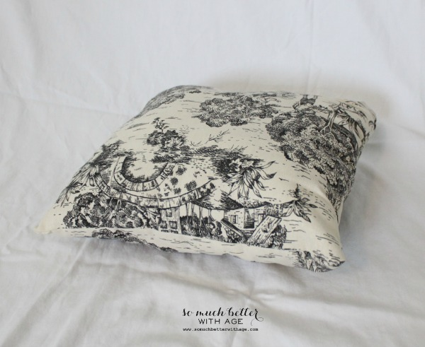 side-toile-pillow