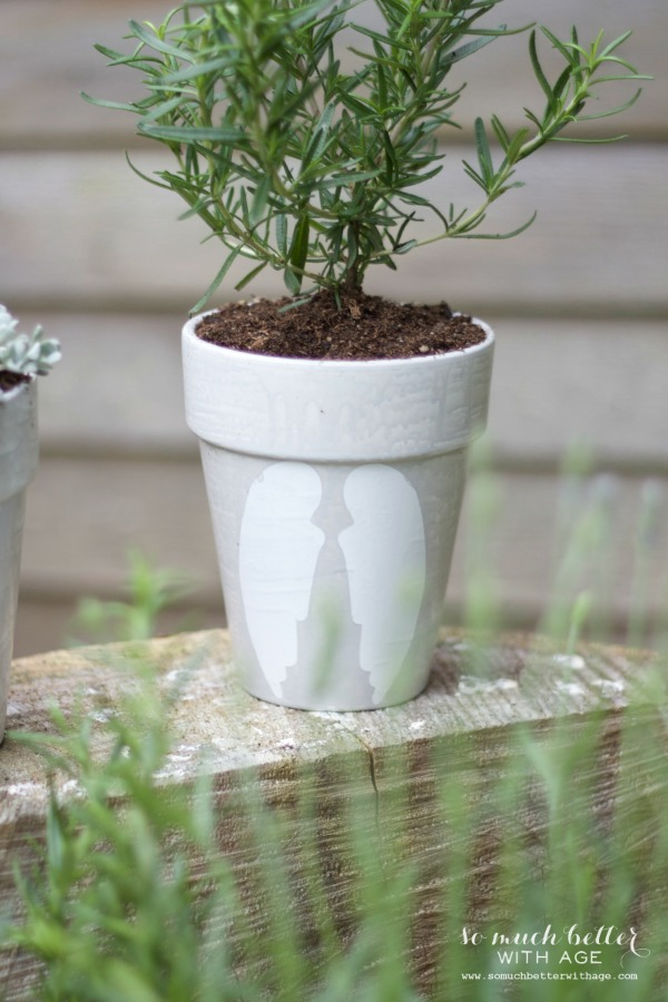 French glazed plant pots / pretty white pots in garden - So Much Better With Age