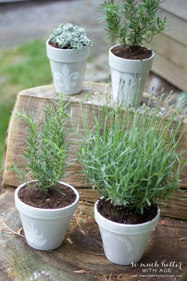 French glazed plant pots / pots in garden - So Much Better With Age
