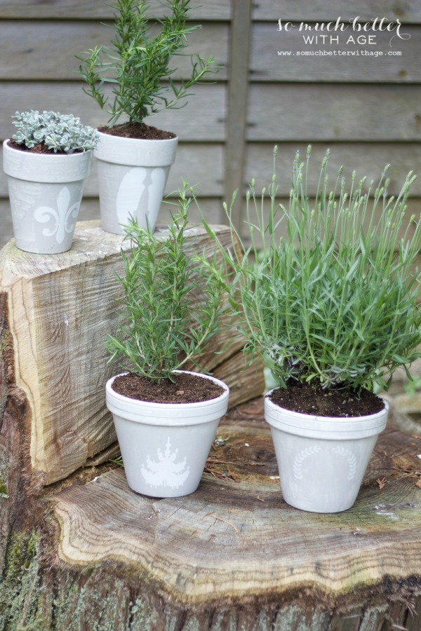 French glazed plant pots / potted plants on wooden stumps - So Much Better With Age