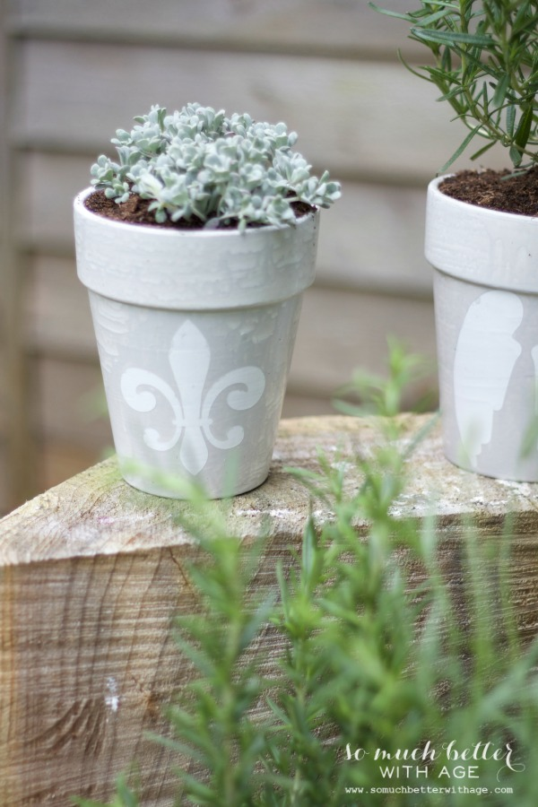 French glazed plant pots - So Much Better Wth Age