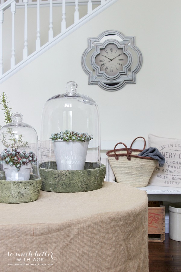 French clock and terrariums | somuchbetterwithage.com