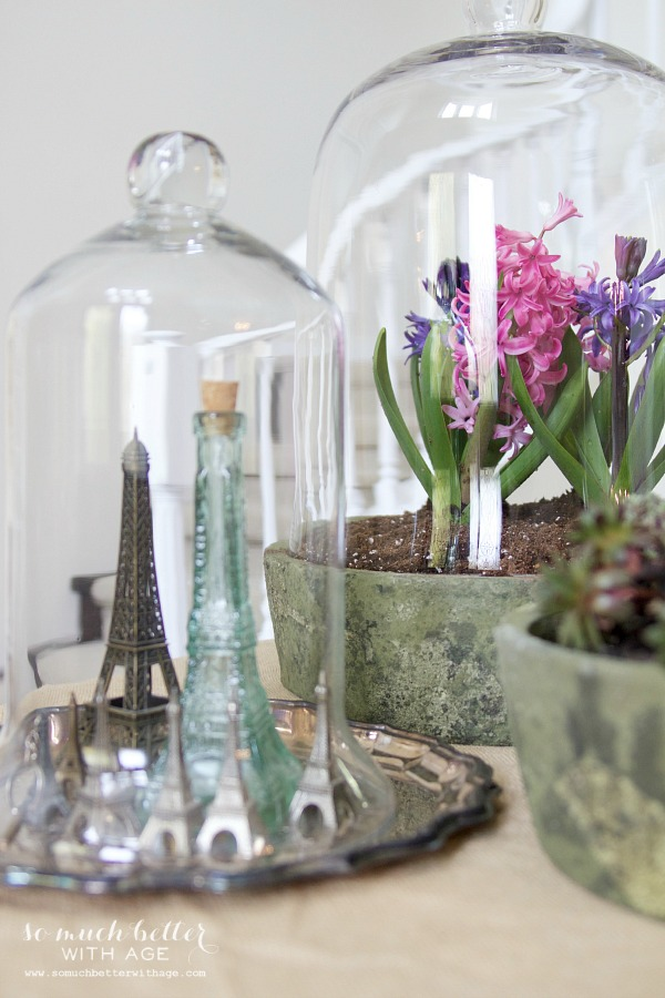 Spring flowers in terrariums / Eiffel towers under cloche - So Much Better With Age