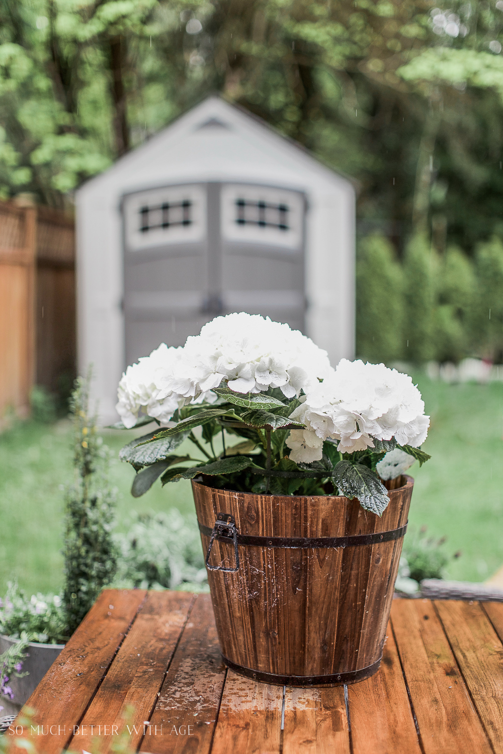 The Best Tip For Filling Large Outdoor Planters So Much Better With Age