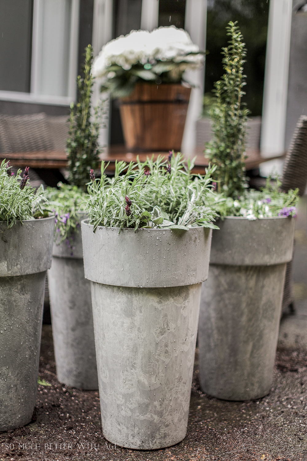 The Best Tip For Filling Large Outdoor Planters So Much Better