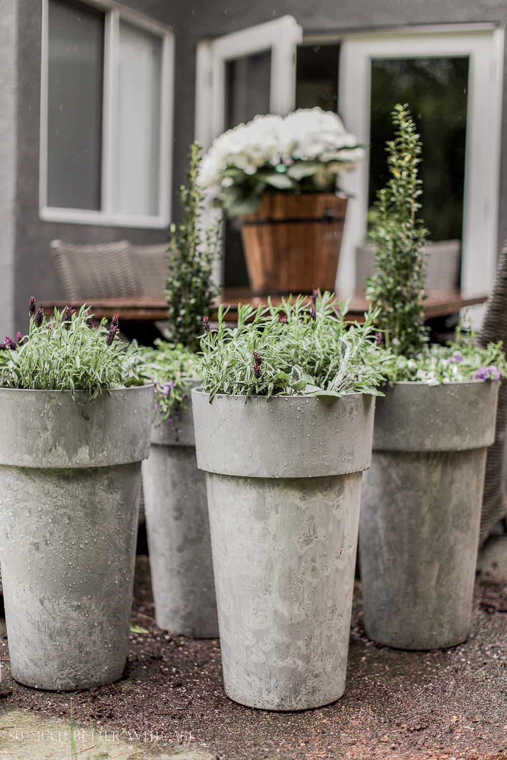 Best Tip for Filling Large Outdoor Planters - So Much Better With Age