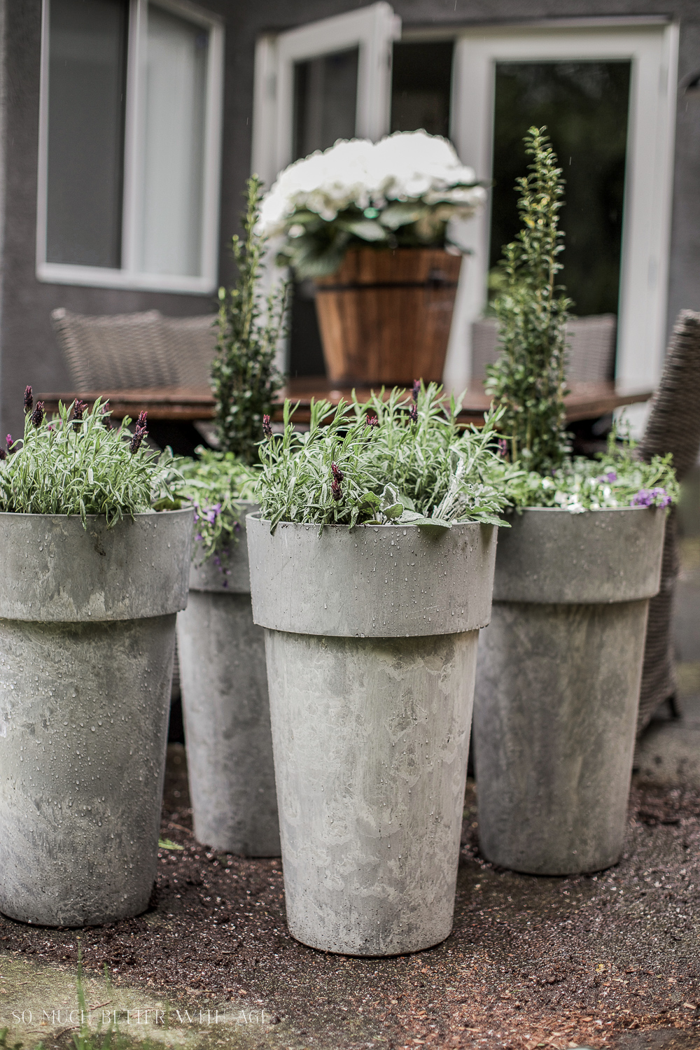 Large Outdoor Planter Pots The best tip for filling large outdoor planters so much better the best tip for filling large outdoor planters so much better with age workwithnaturefo