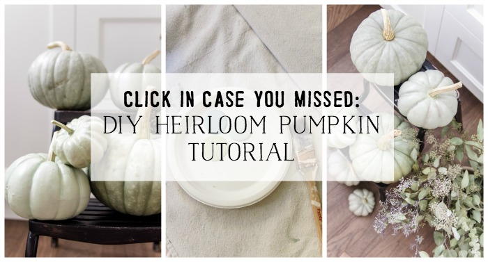 Click in case you missed DIY heirloom pumpkin tutorial - So Much Better With Age