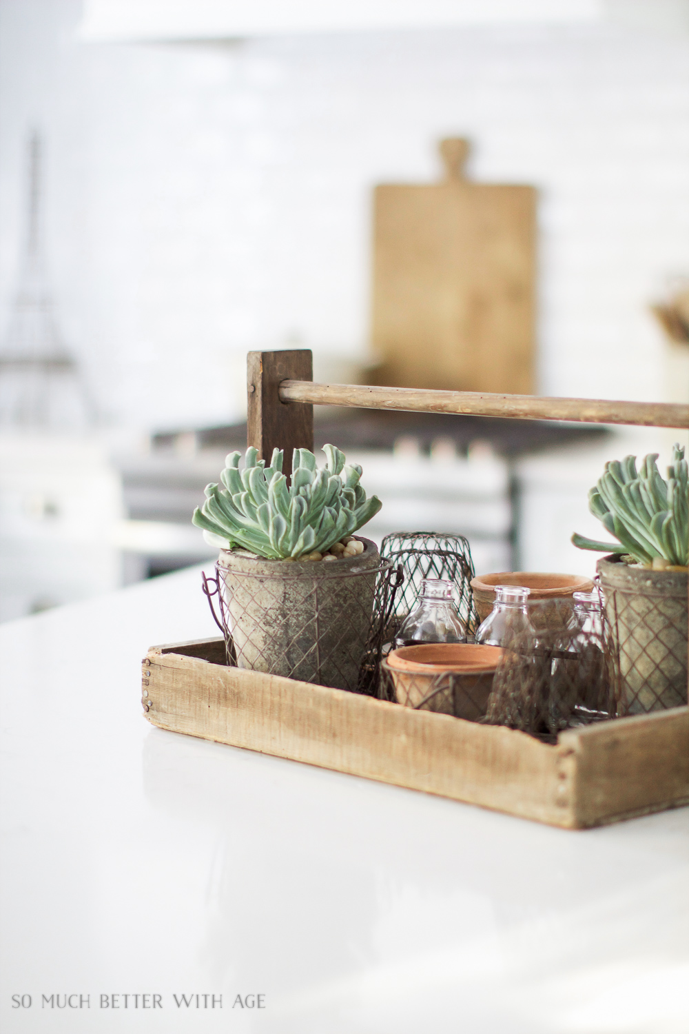 Succulents on kitchen island/ My Big Beautiful Kitchen Renovation - Before and After Photos