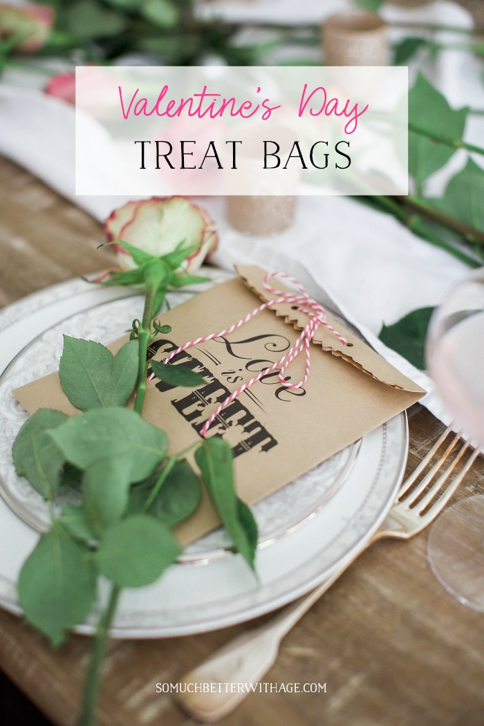 Valentine's Day Treat Bags graphic - So Much Better With Age