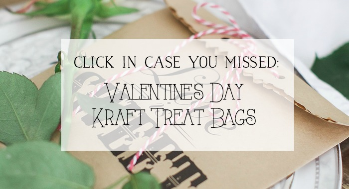 Valentine's Day Kraft Treat Bags