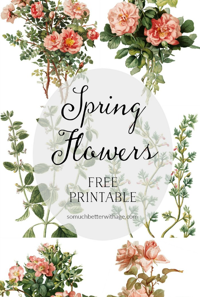 Spring Flowers - Free Printables - So Much Better With Age