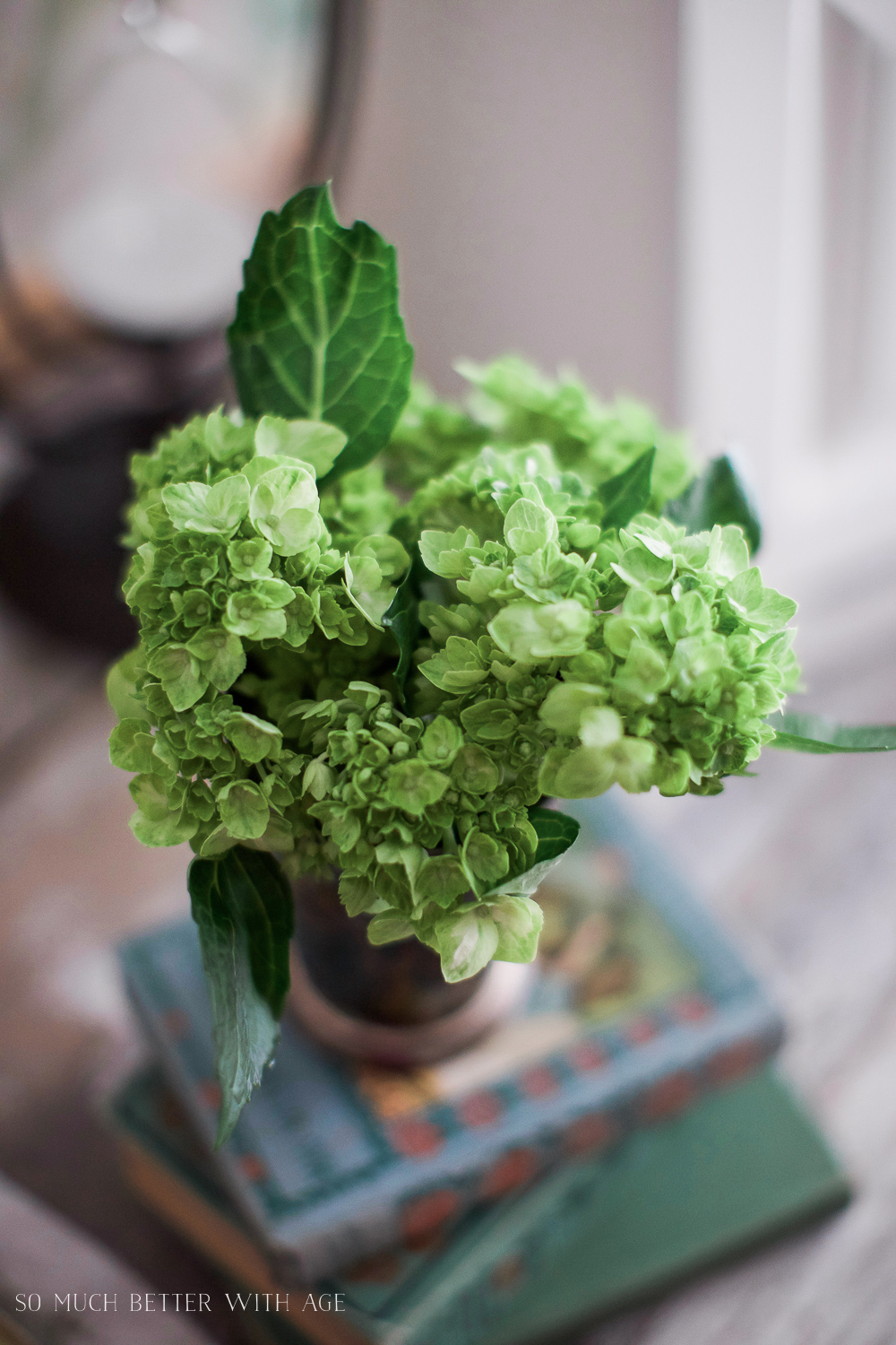Bread Box to Letter Box - Green Hydrangeas - So Much Better With Age