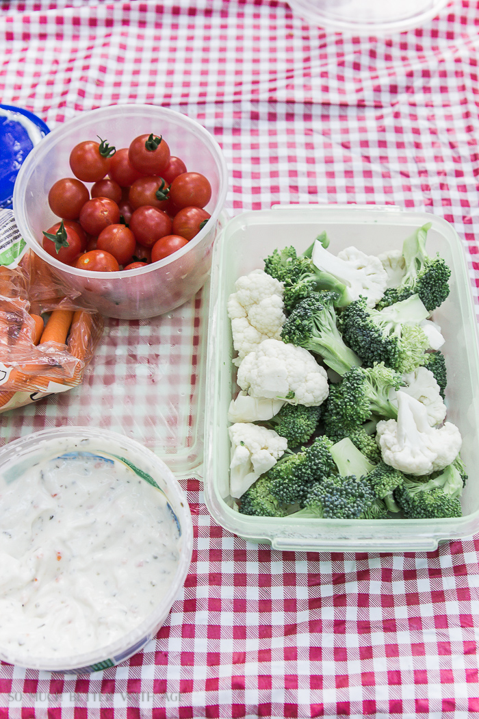 Broccoli, tomatoes and dip on picnic table.