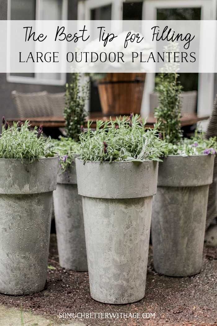 The Best Tip for Filling Large Outdoor Planters poster.