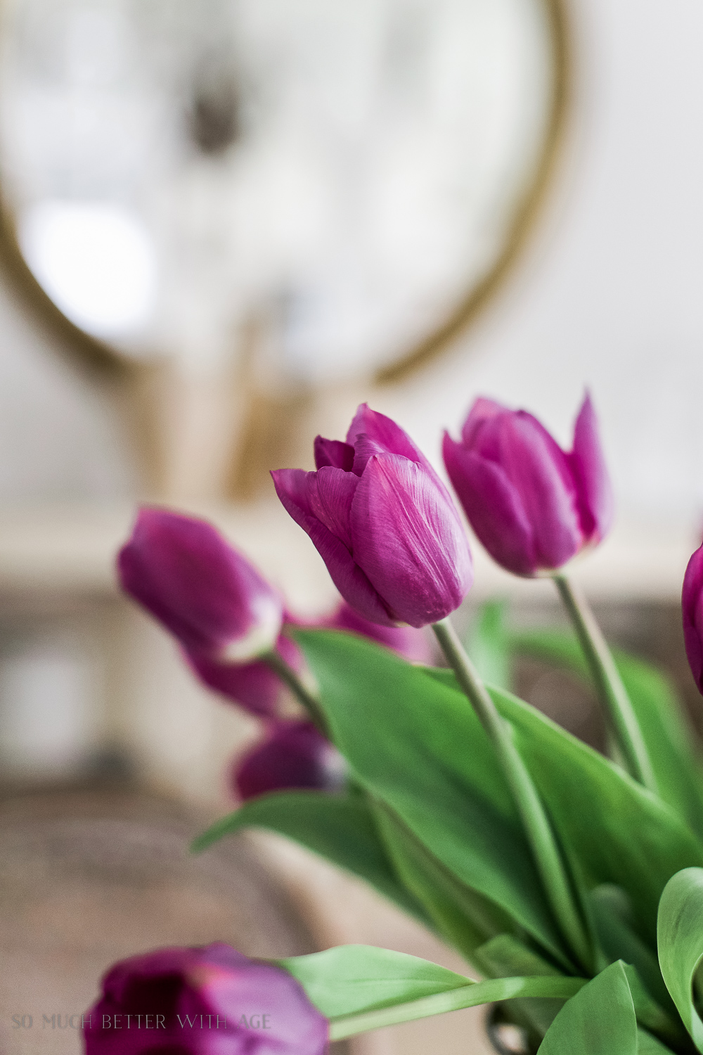 French Vintage Dining Room/close-up of tulips - So Much Better With Age