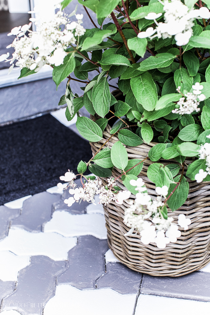 Front Porch Makeover with Painted Paving Stones/white flower plant - So Much Better With Age
