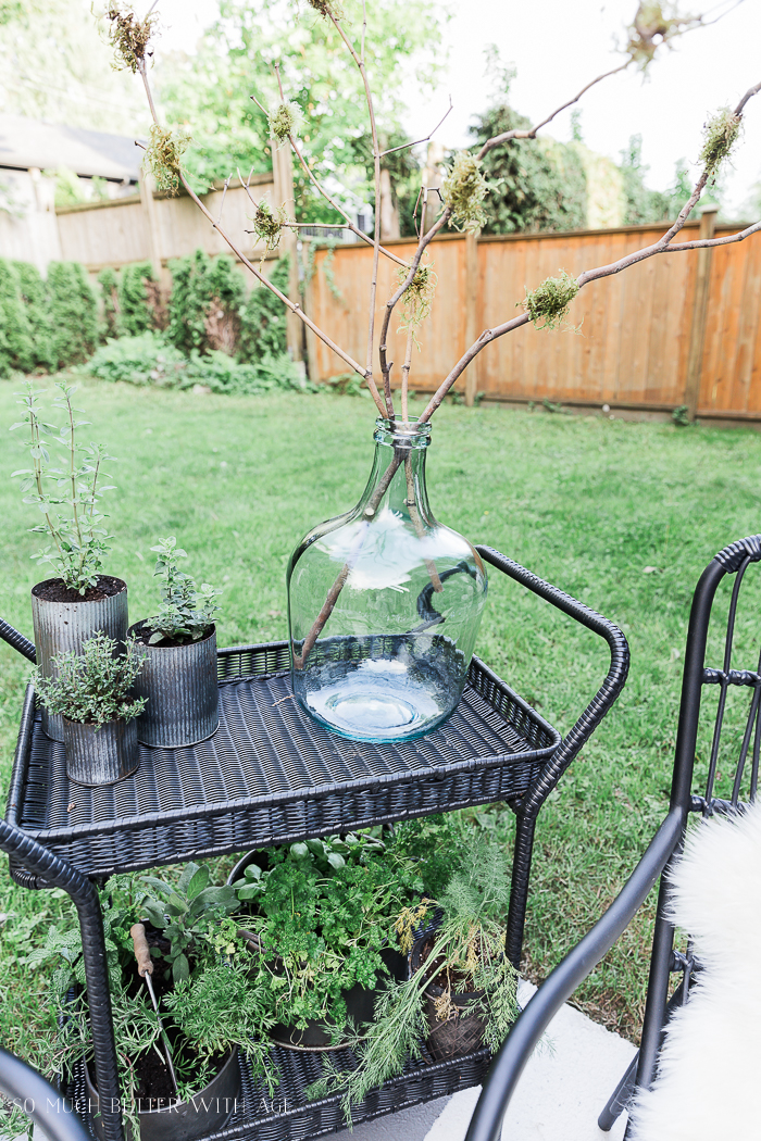 How to Create Two Outdoor Seating Areas in Small Space/mossy branches - So Much Better With Age