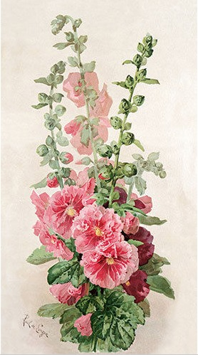 Paul do Longpre Floral Prints, My Favorite French Artist/Hollyhocks - So Much Better With Age