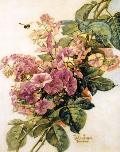 Paul do Longpre Floral Prints, My Favorite French Artist/ Morning Glories - So Much Better With Age