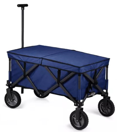The Best Summer Picnic Items/folding utility wagon - So Much Better With Age