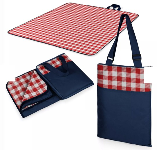 The Best Summer Picnic Items/red white check blanket - So Much Better With Age