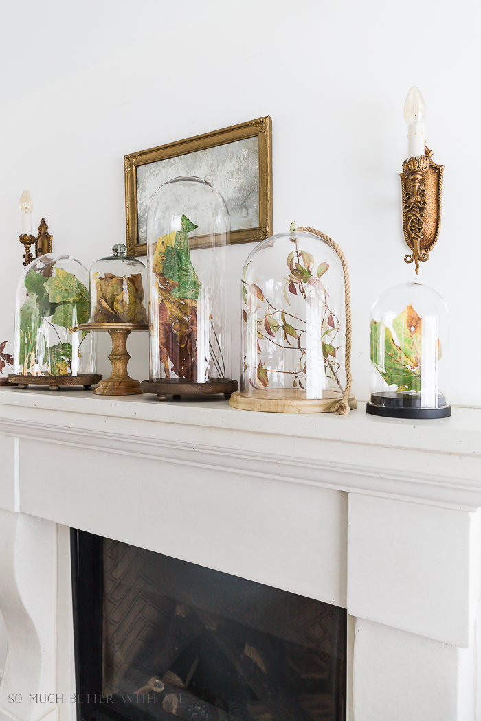 Fall Mantel Decorating with Leaves in Cloches/fall leaves - So Much Better With Age