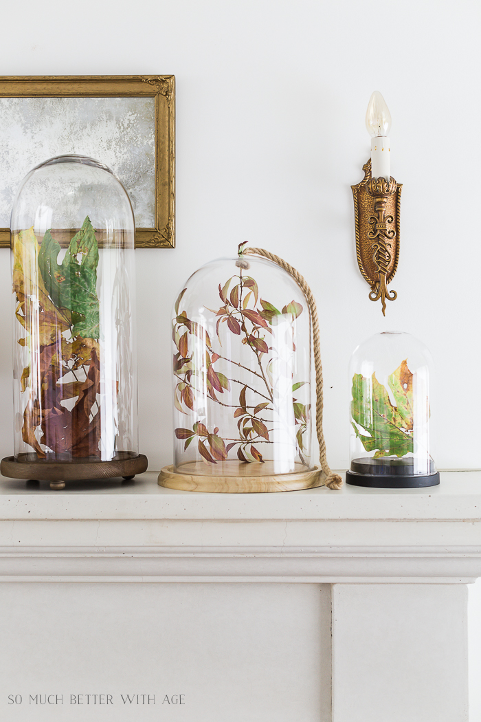 Fall Mantel Decorating with Leaves in Cloches/fall leaves under glass - So Much Better With Age
