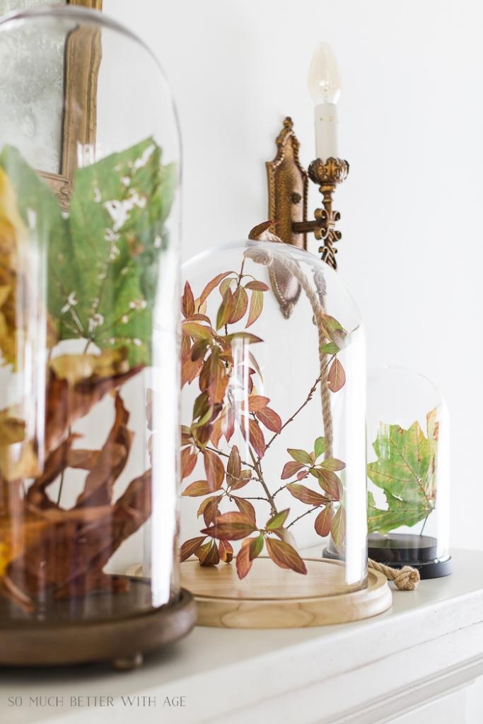 Folhas de outono dentro do cloche de vidro na cornija da lareira.