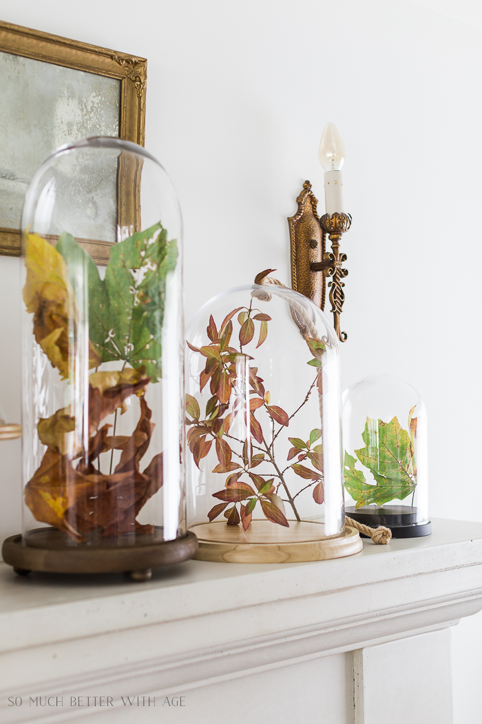 Unique Fall Decorating Ideas/fall leaves under glass cloches - So Much Better With Age