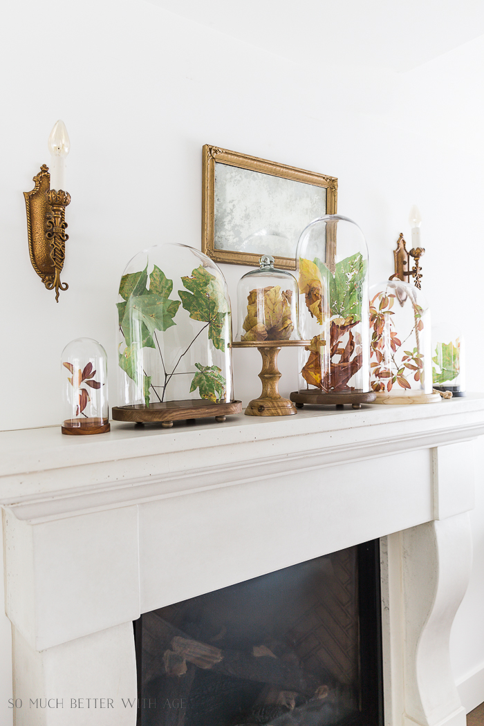 Fall Mantel Decorating with Leaves in Cloches/limestone mantel - So Much Better With Age