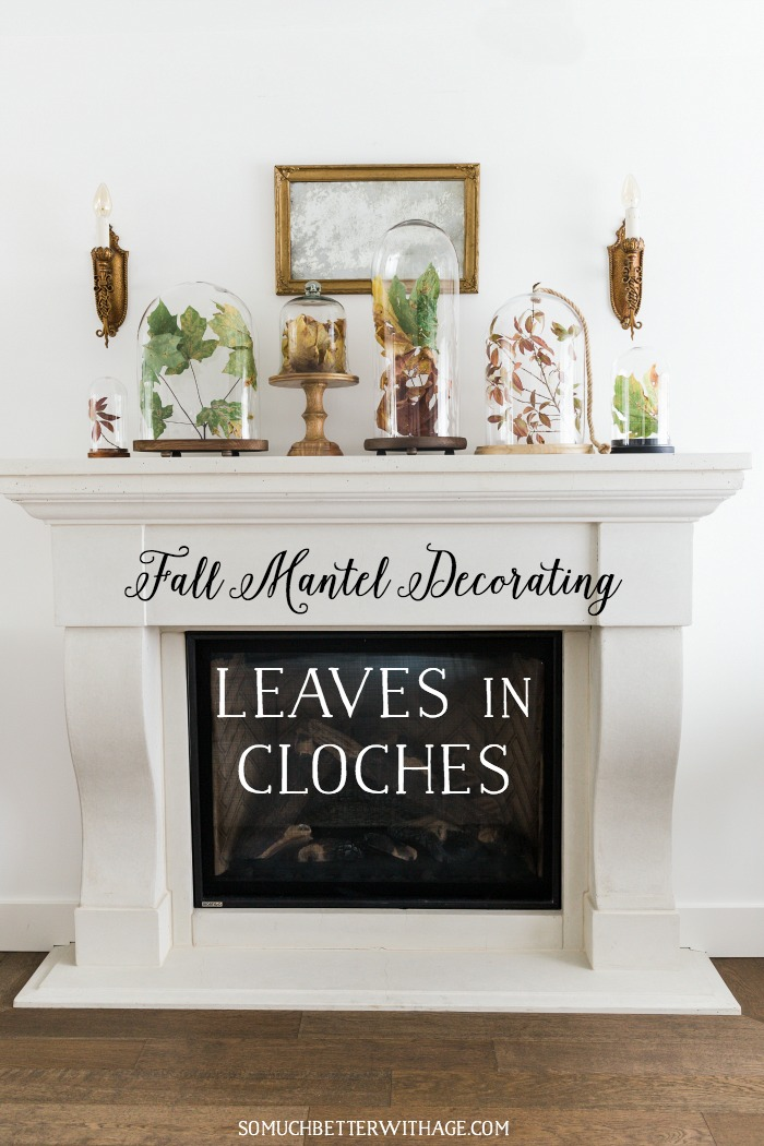 Fall leaves in cloches / fall mantel decorating - So Much Better With Age
