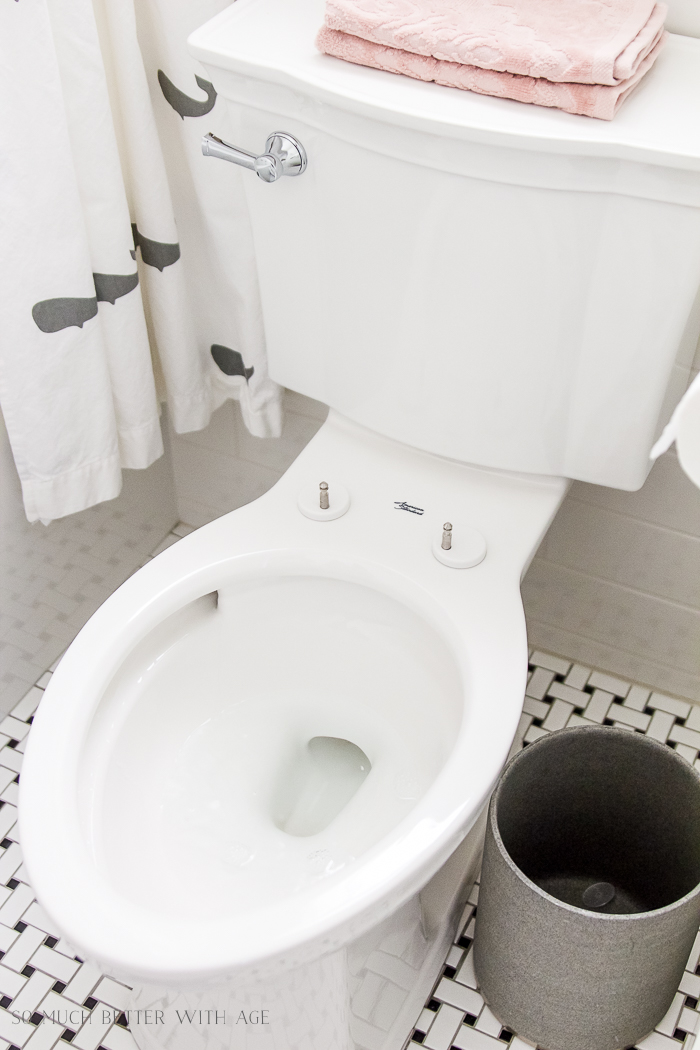 A toilet seat that is removable.