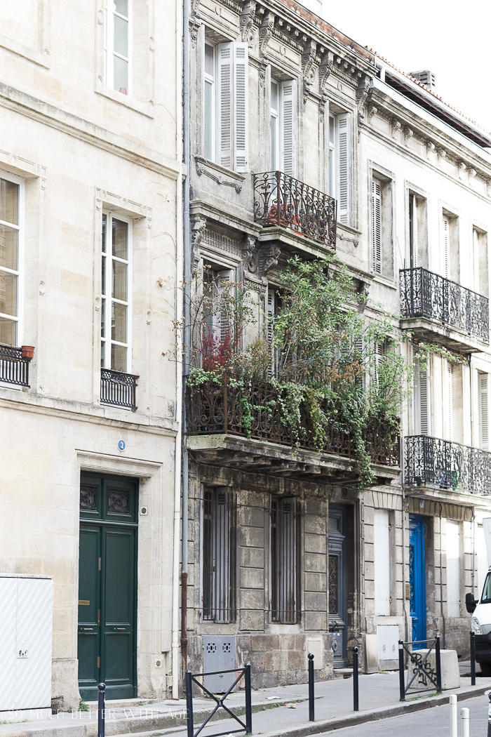 Plants growing on a balcony in Bordeaux.