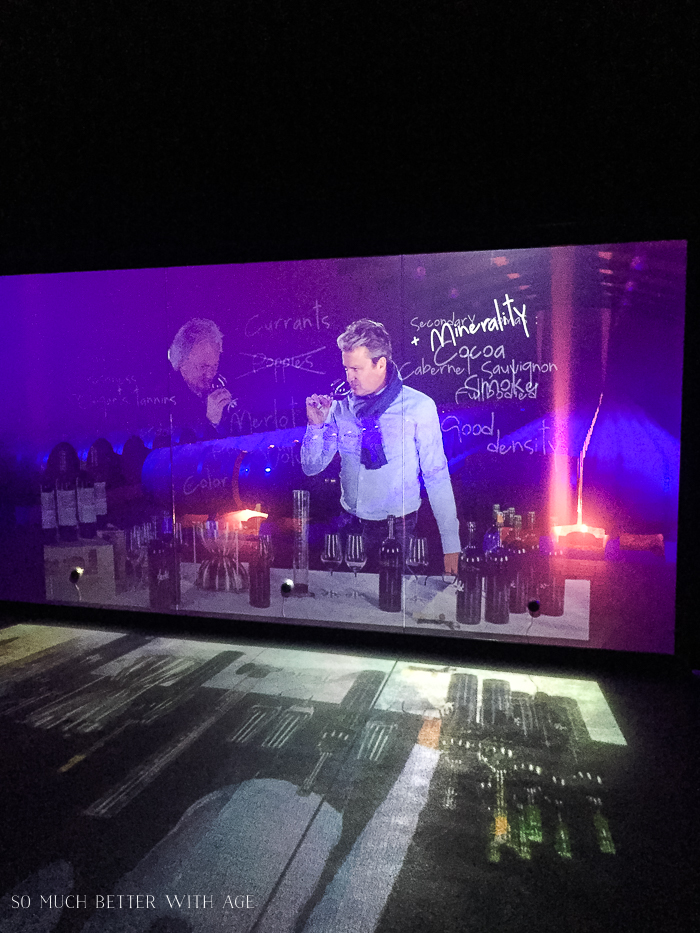 Why You Must Visit Bordeaux/video presentation at vineyard - So Much Better With Age