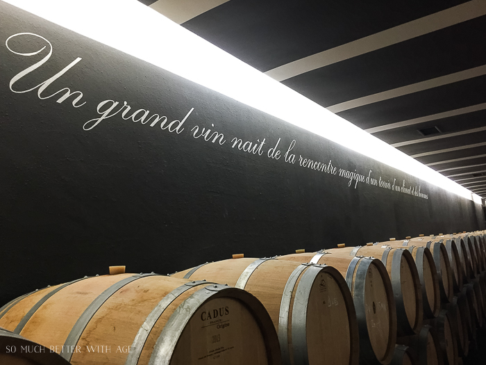Why You Must Visit Bordeaux/Bordeaux wine in barrels - So Much Better With Age