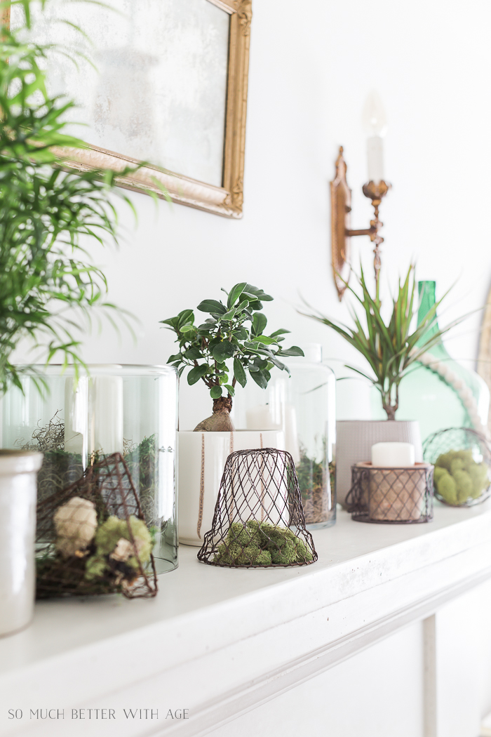 Creative Greenery Spring Mantel/wire baskets, green plants - So Much Better With Age