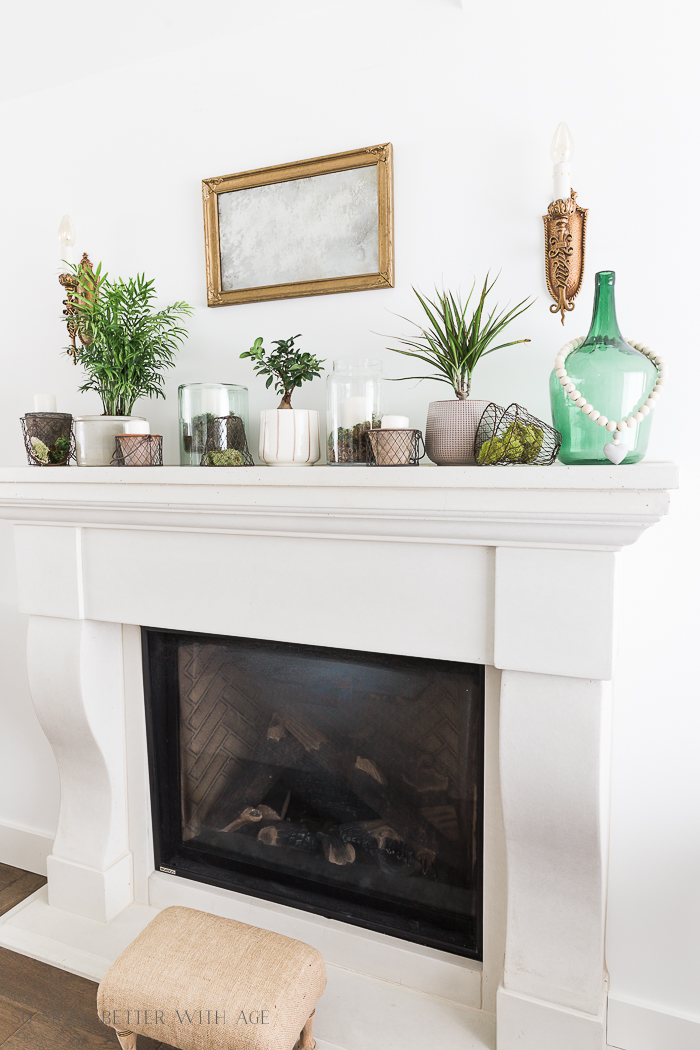 Creative Greenery Spring Mantel/plants on fireplace mantel - So Much Better With Age