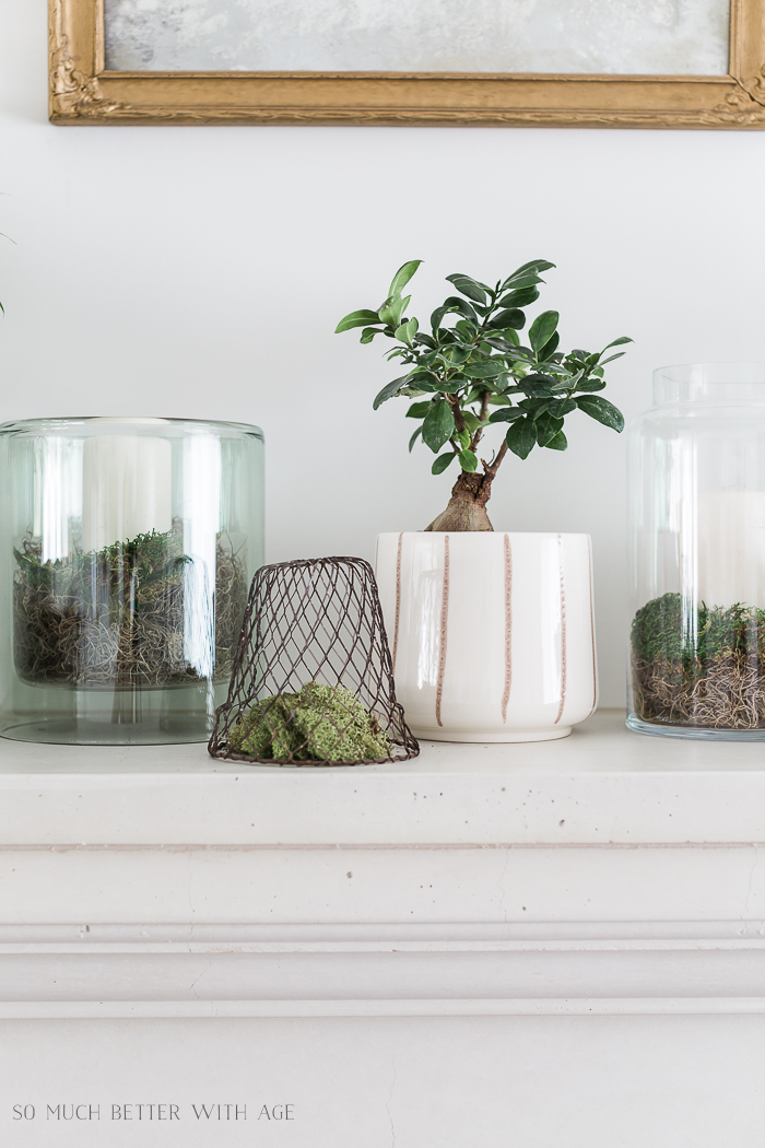 Creative Greenery Spring Mantel/plant in planter, vase - So Much Better With Age