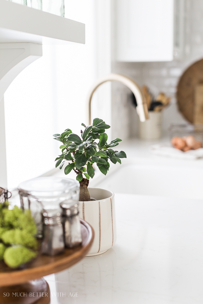 Simple Spring Decor Ideas/plants in kitchen - So Much Better With Age