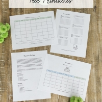 Co-Parenting Schedules- Free Printables (Lists for Two Households to Run Smoothly)