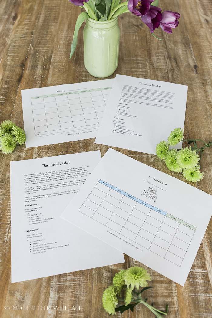 Co-Parenting Schedules - Free Printables - So Much Better With Age