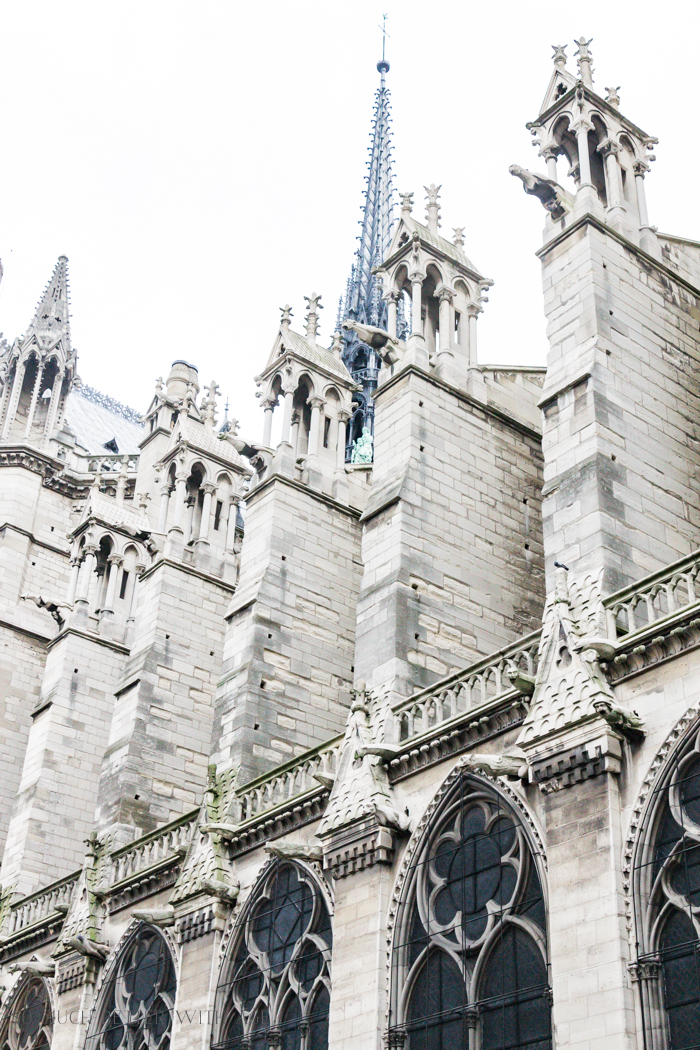 Paris Highlights Including Notre Dame/details of Notre Dame cathedral - So Much Better With Age