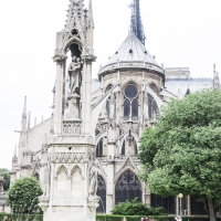 Paris Highlights Including Notre Dame