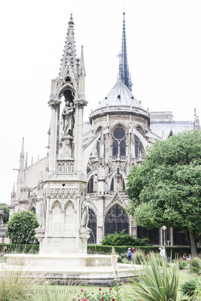 Paris Highlights Including Notre Dame/Notre Dame cathedral back - So Much Better With Age