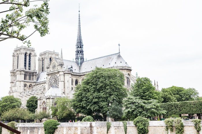 Paris Highlights Including Notre Dame/Notre Dame by river seine - So Much Better With Age