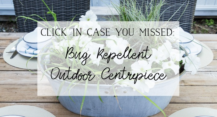 Bug repellent outdoor centrepiece poster.